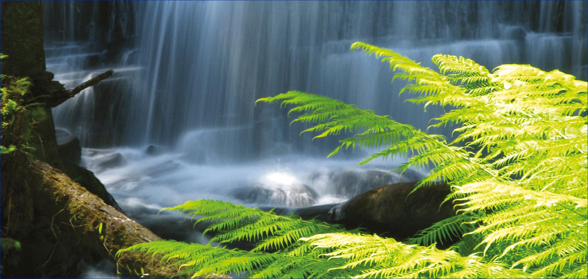 Salvalacqua _ Una nuova coscienza nell'uso dell'acqua